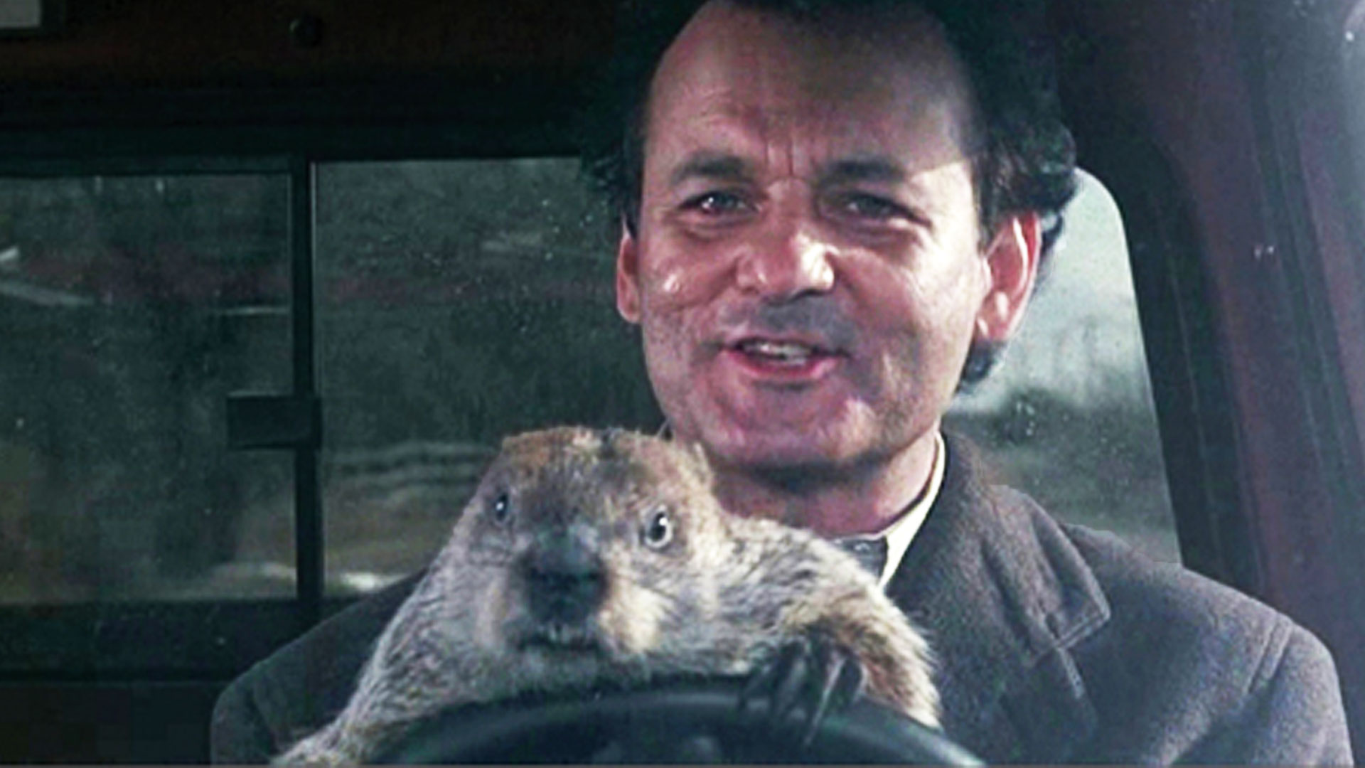 Groundhog Day Movie Quotes Groundhog Day Chances And Choices  Madeleine Boerma